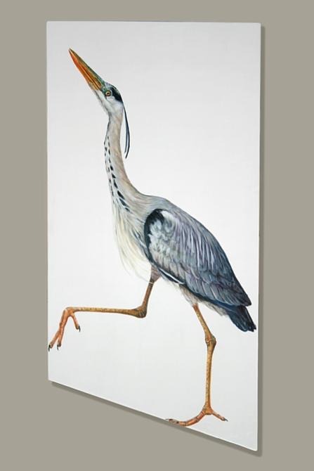 Striding_Heron