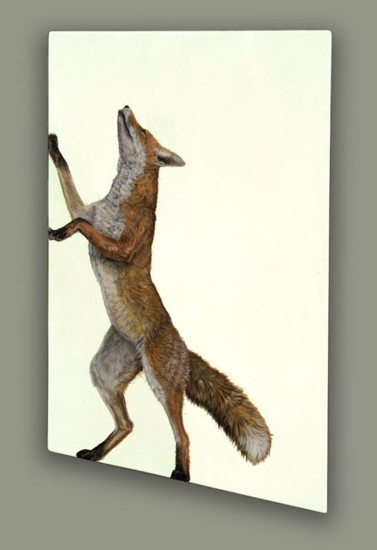 Upward-Fox-Hazel-Mountford_1